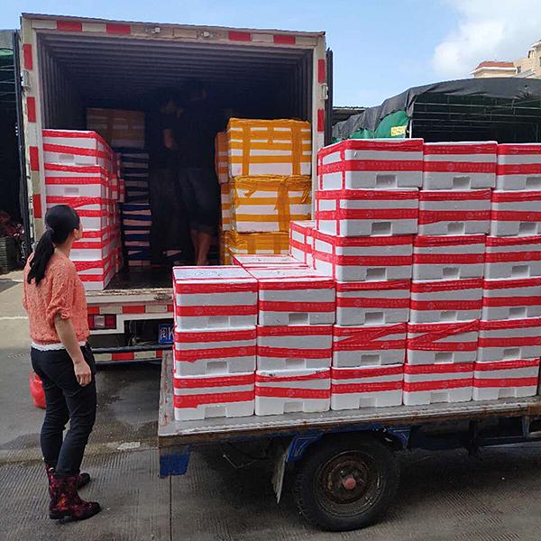 中心食材自采小组前往马尾海鲜市场进行采购